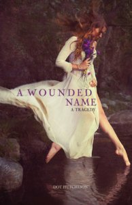 A Wounded Name - Dot Hutchison